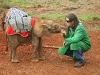 elephant and care taker