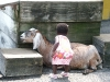 Eden petting the goat