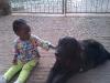 Eden playing with Tusker, an IU House Dog